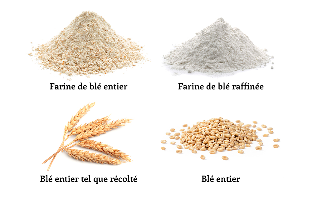 Wheat Types Revised.jpg
