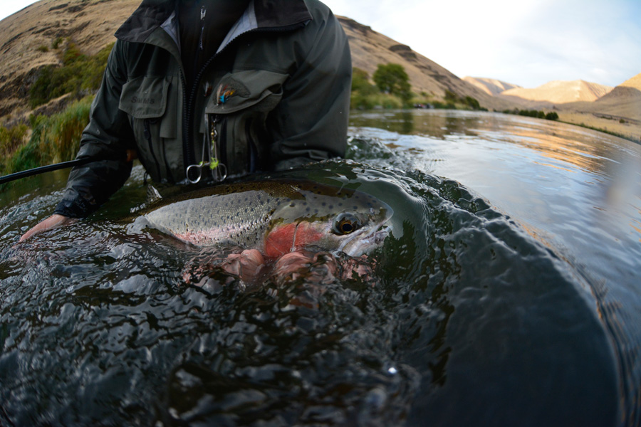In addition to being a veteran steelhead guide, Marty is also a top notch photographer.