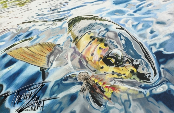 """Felicity"" is drawn from a Bryan Huskey #keepemwet photo of a wild Eastern Oregon desert rainbow trout."
