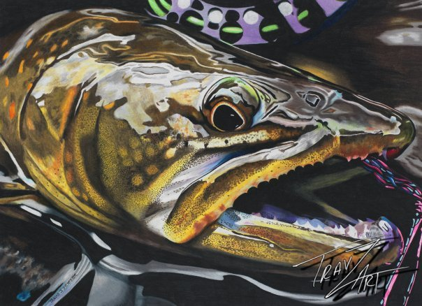 """I Call Bull"" is drawn from a Bryan Huskey #keepemwet photo of a wild bull trout from the Imnaha River."