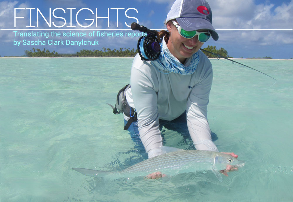 "Follow along with Sascha's new series ""Finsights"" where she breaks down the important elements of scientific reports into simple takeaways for the angling community to understand and embrace."