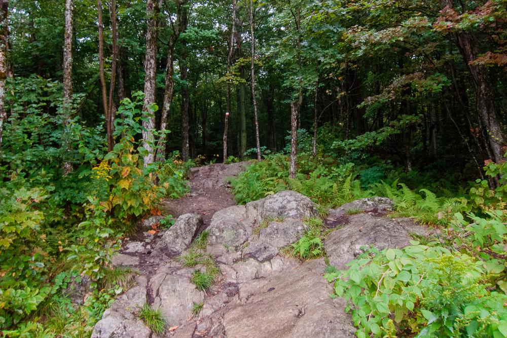 Sentier du Mont Chauve