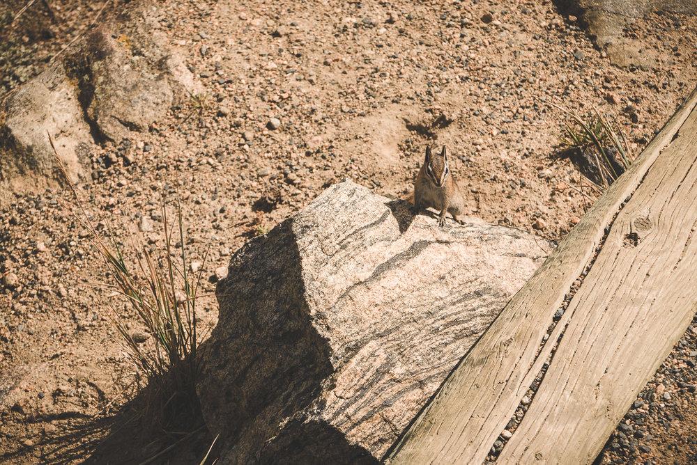 Colorado-1-1220998.jpg