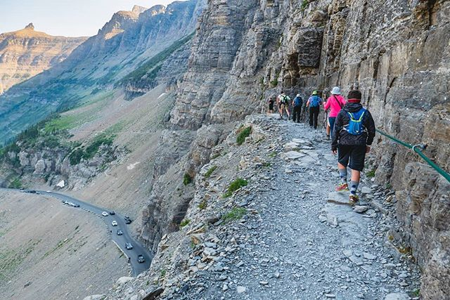 Highline trail in Glacier National Park. There are many people at the start, but not all of them hike the entire trail. #highlinetrail #hiking #family #outdoors #mountains #happyplace #montana #glaciernationalpark #trail #summer