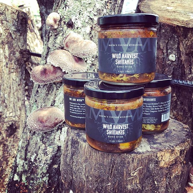 Proud to introduce the newest member of the MVM family- Berber Spiced Wild Harvest Shiitake!! Recipe developed by fermentation genius @meaveeatsworms, label by @ryanisanisland, this is a year long labor of love that will Blow. Your. Mind. Pick it up at @westtisburyfarmersmarket @morninggloryfarmmv @formaggiosouthend @formaggiokitchen