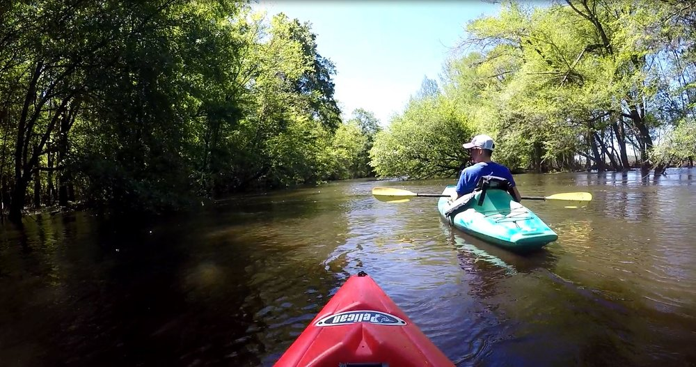 Venters Landing to Persimmon's Bluff - Join us in the Revolutionary Trail down Lynches River. This trip was featured in SC Living Magazine. The trip will take approximately 4 hours. Don't be late! Meet at Odell Venters Landing on Kingsburg Hwy.Rental Includes: Kayak, life jacket and paddle