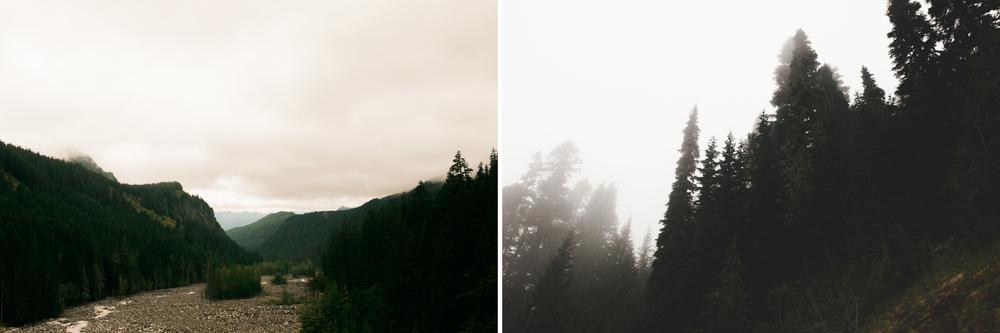 blog rainier2.jpg