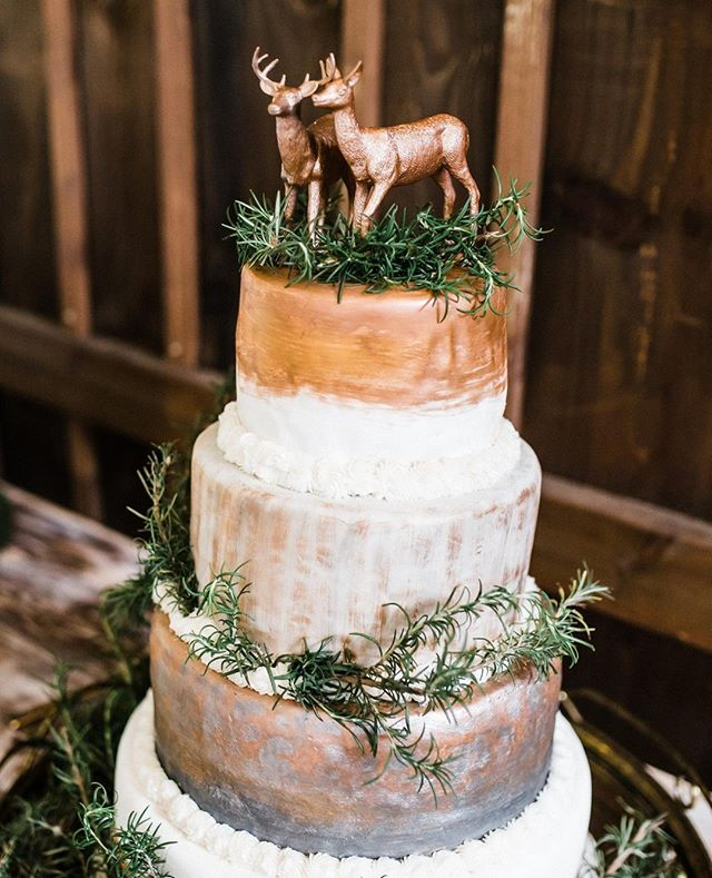 The cake of my dreaaaams! Looks like something meant for a woodlen fairy wedding. 😍 . . . #athensga #athensgaweddingphotographer #athensgaweddings #atlantaweddingphotography