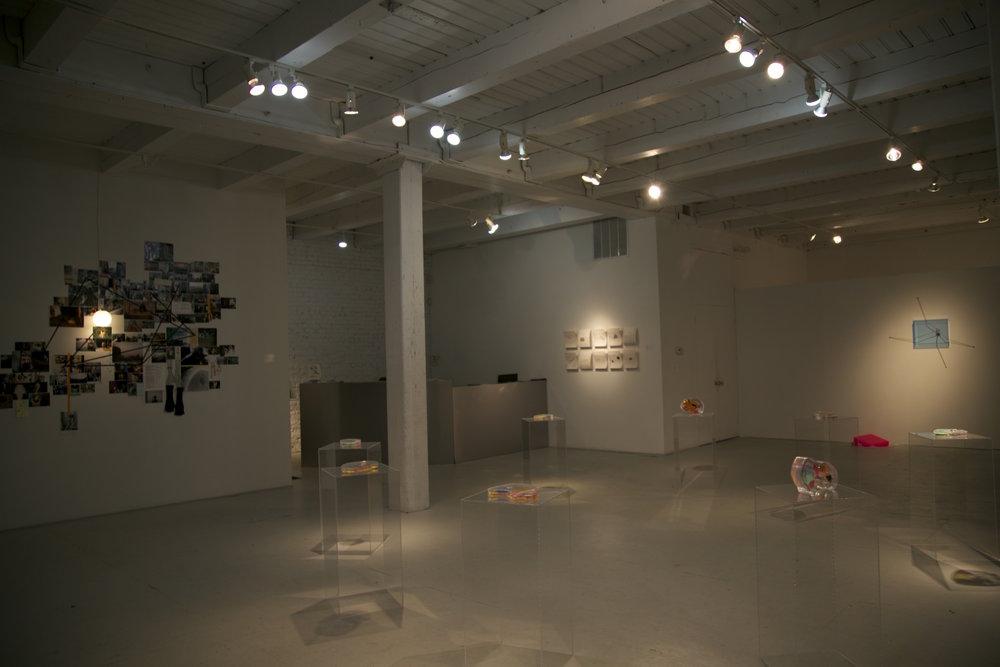 Nitty+Gritty_Curator+Sadie+Woods_27-69.jpg