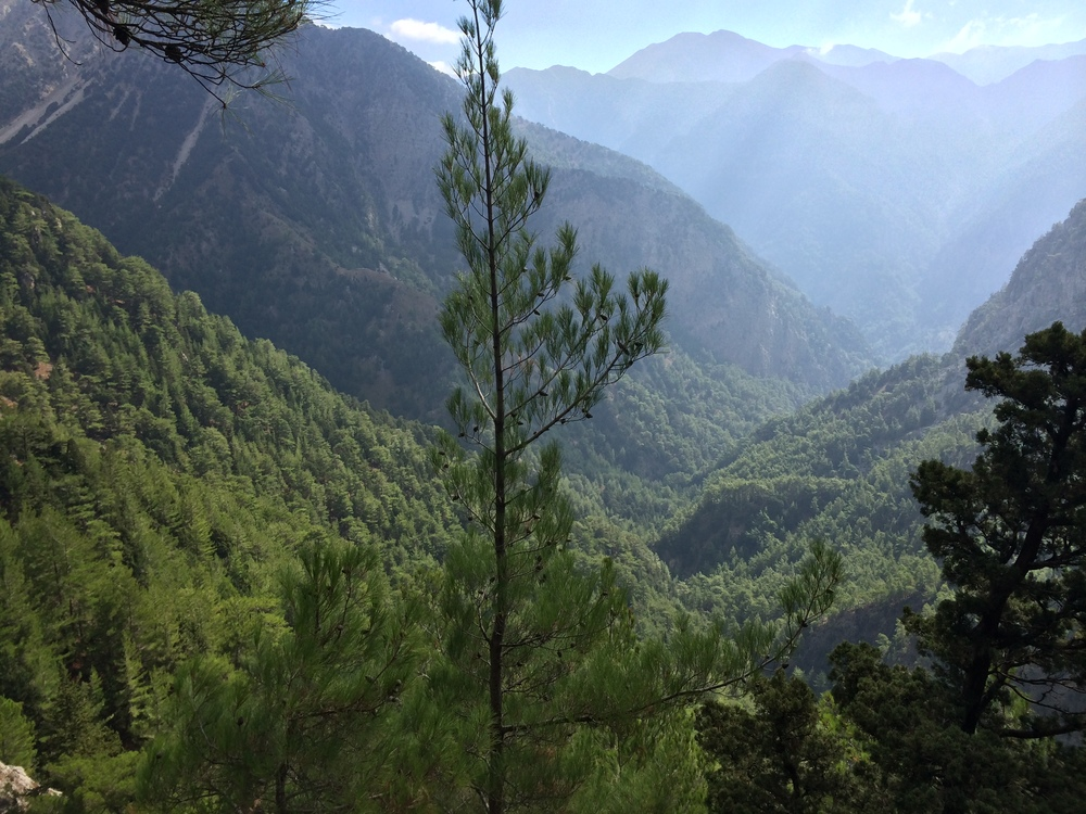 Samaria view.jpg