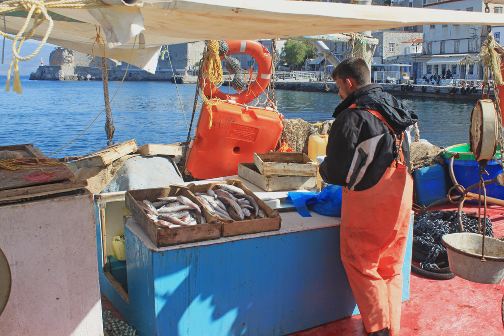 Hydra fish market.jpg