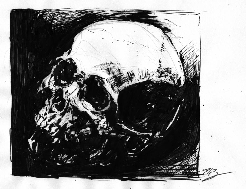 skull 1 2016.jpg