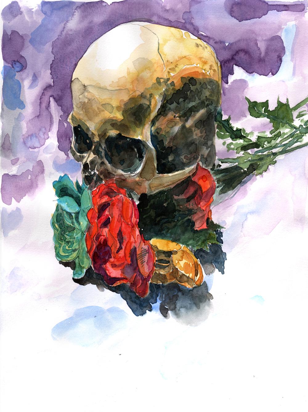 skull 3 2016 web.jpg