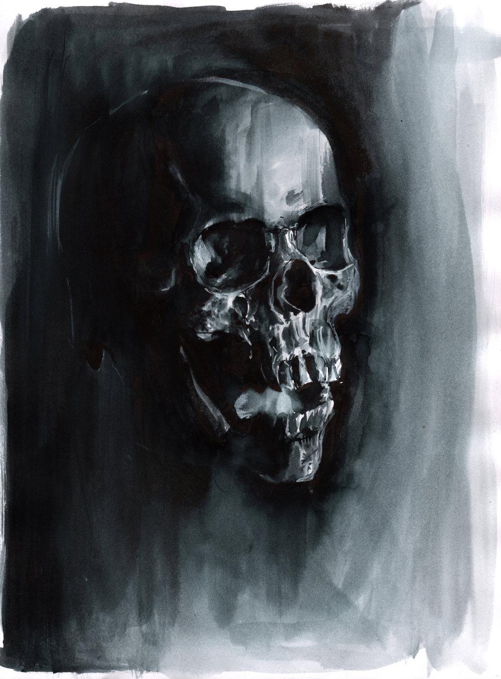 skull 9 2016.jpg