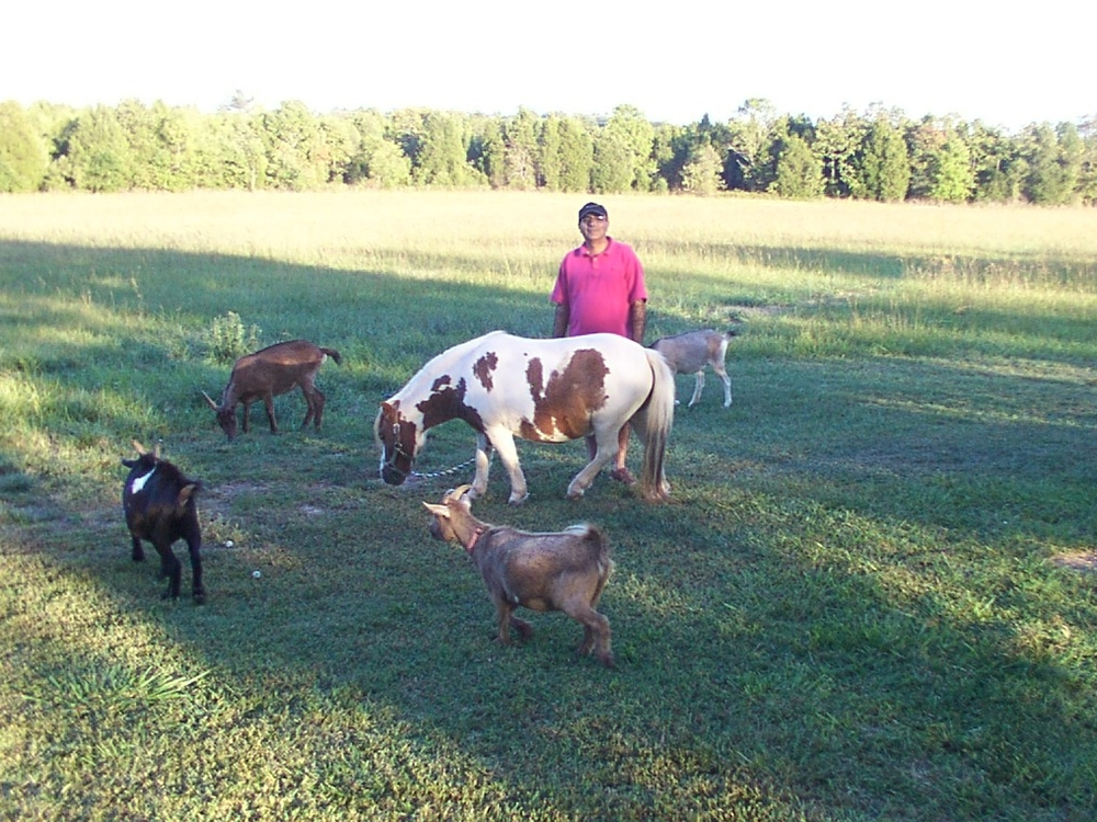Ali with our goats and our miniature horse