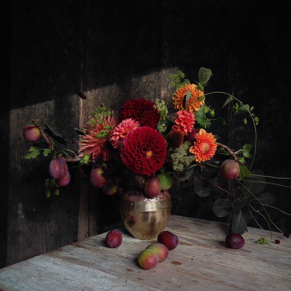 Dahlias & Plums, Still Life Floral