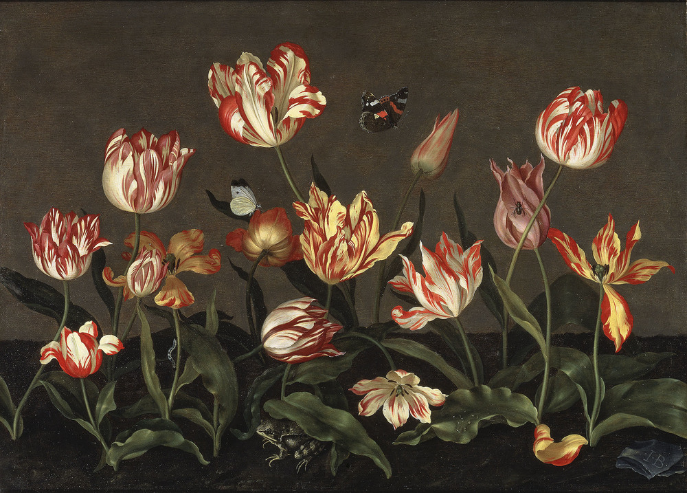 Johannes Bosschaert,  Still Life with Tulips  (c. 1630)