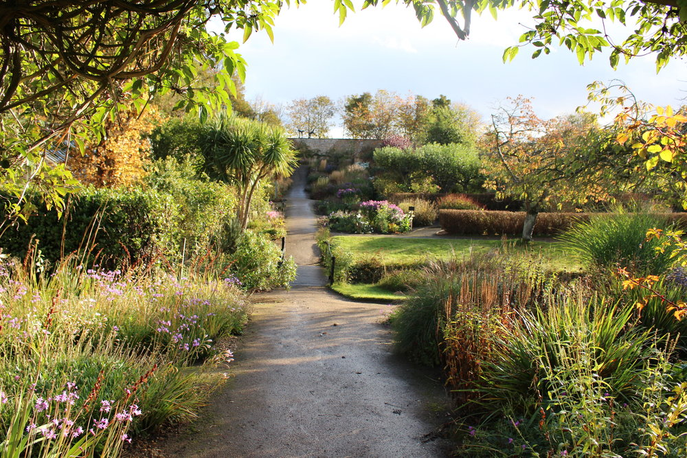 The 2.5 acre walled garden planted in a naturalistic style. The walled garden has  great drainage (a wee burn runs through the centre) and sandy soil. Although a short walk from the North Sea, Elliot Forsyth, head gardener, uses plants suited to zones 7/8.