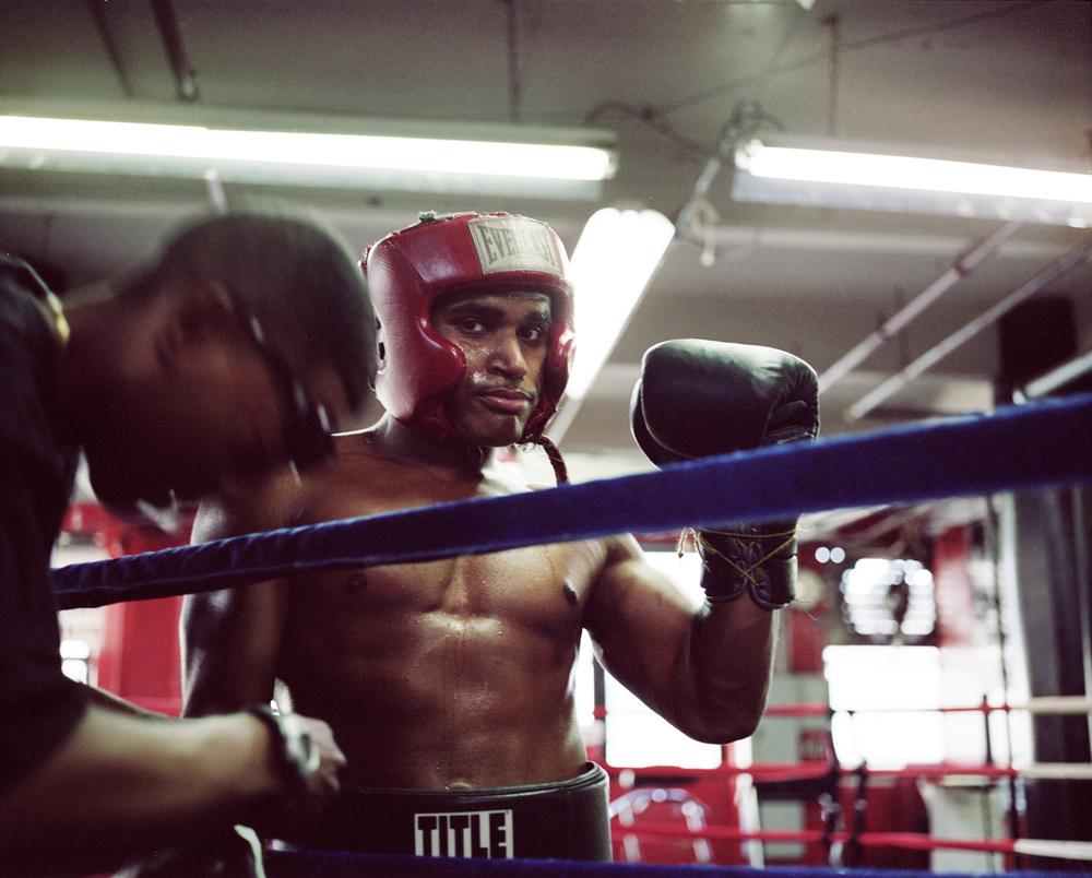 BoxerRing1.jpg