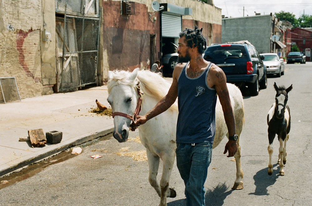 In Northern Philadelphia a thriving urban riding tradition dates back to the 1900's. Today, North Philly struggles with poverty and unemployment, making it difficult for anyone to maintain horses. Despite the hardships that come with living in the inner city, this close knit community of horse owners have become role models to local youth and create a positive outlet for the neighborhood.
