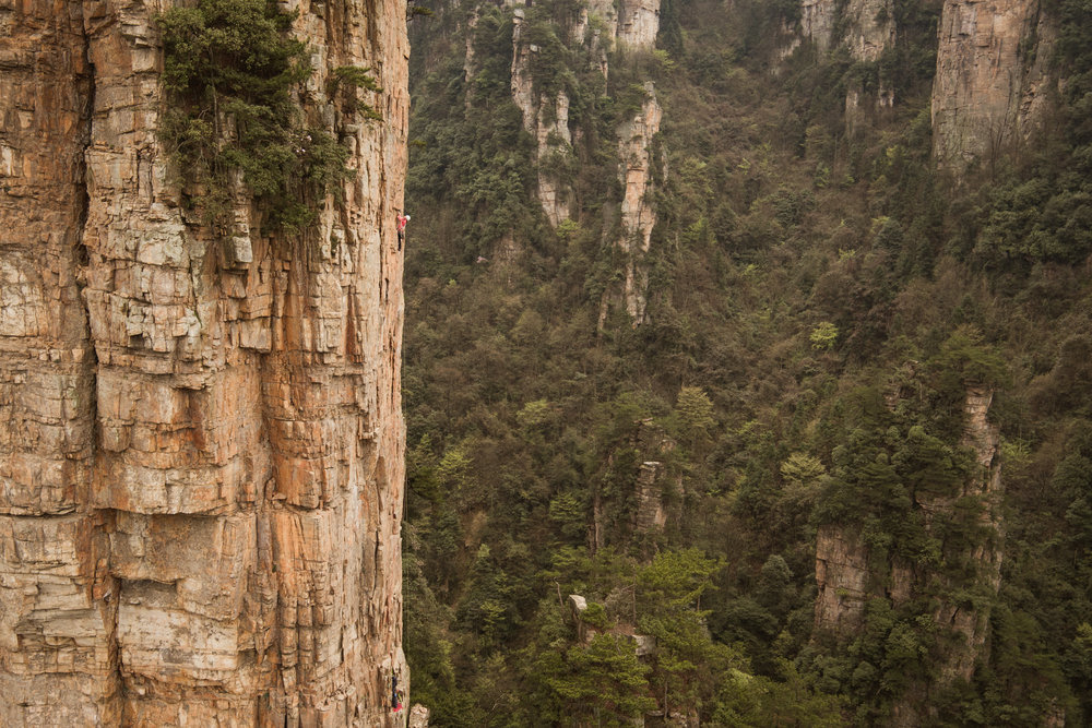 Mayan Smith-Gobat searching for the line up a new tower in the Queng Feng Valley of China.