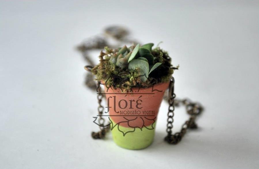 Collar vegetal hecho en México   Imagen, Floré Biodiseño Vegetal