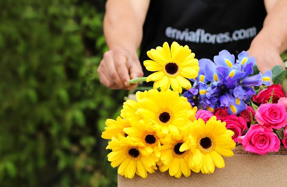 ENVIA FLORES CON ENVIAFLORES.COM