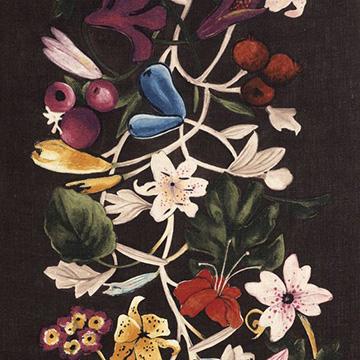 """Dedar """"About Flowers"""" in Vulcano"""