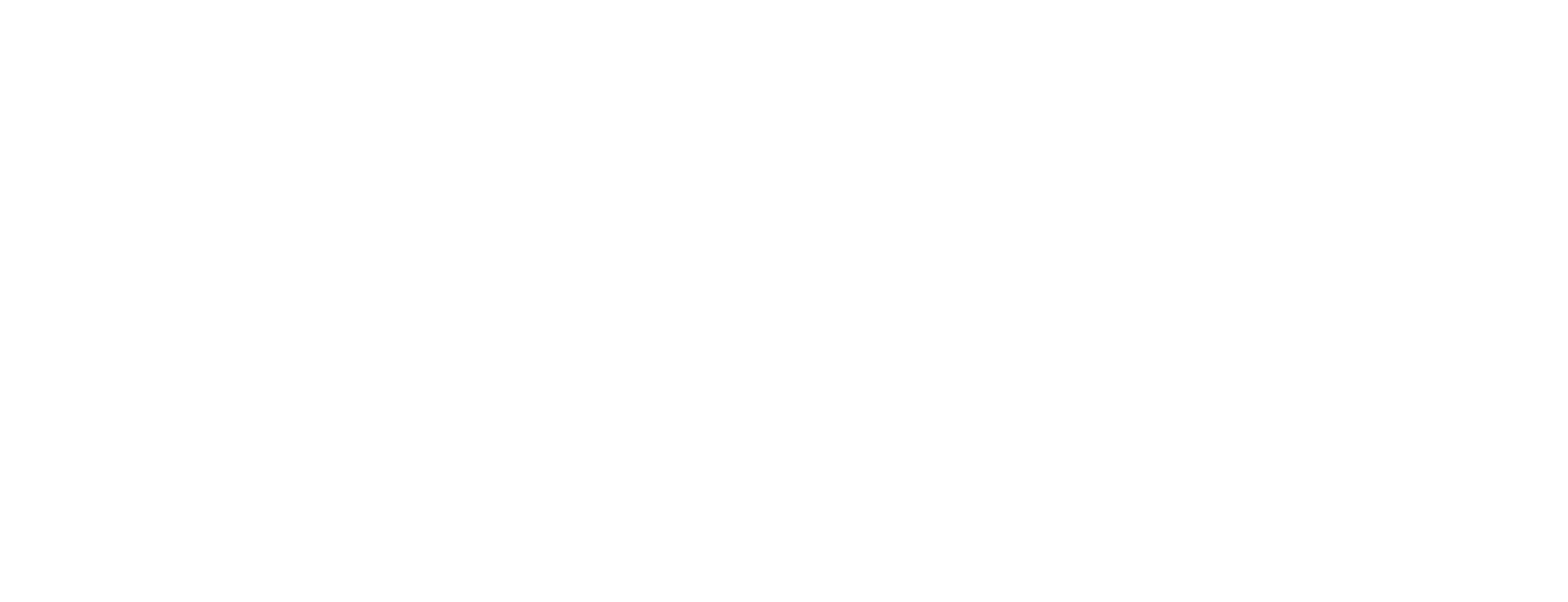 BlueCable Networx LLC