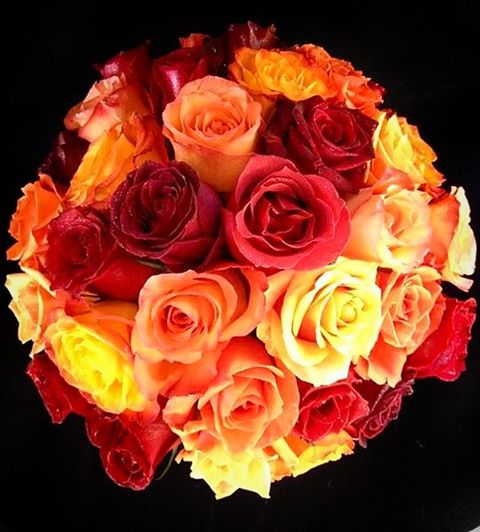 """Some days it storms, some days it shines. This is how flowers grow."" • • #bbfloraldesign #flowers #wedding #flowerstagram #roses #valentinesday #galentinesday #red #orange #yellow"