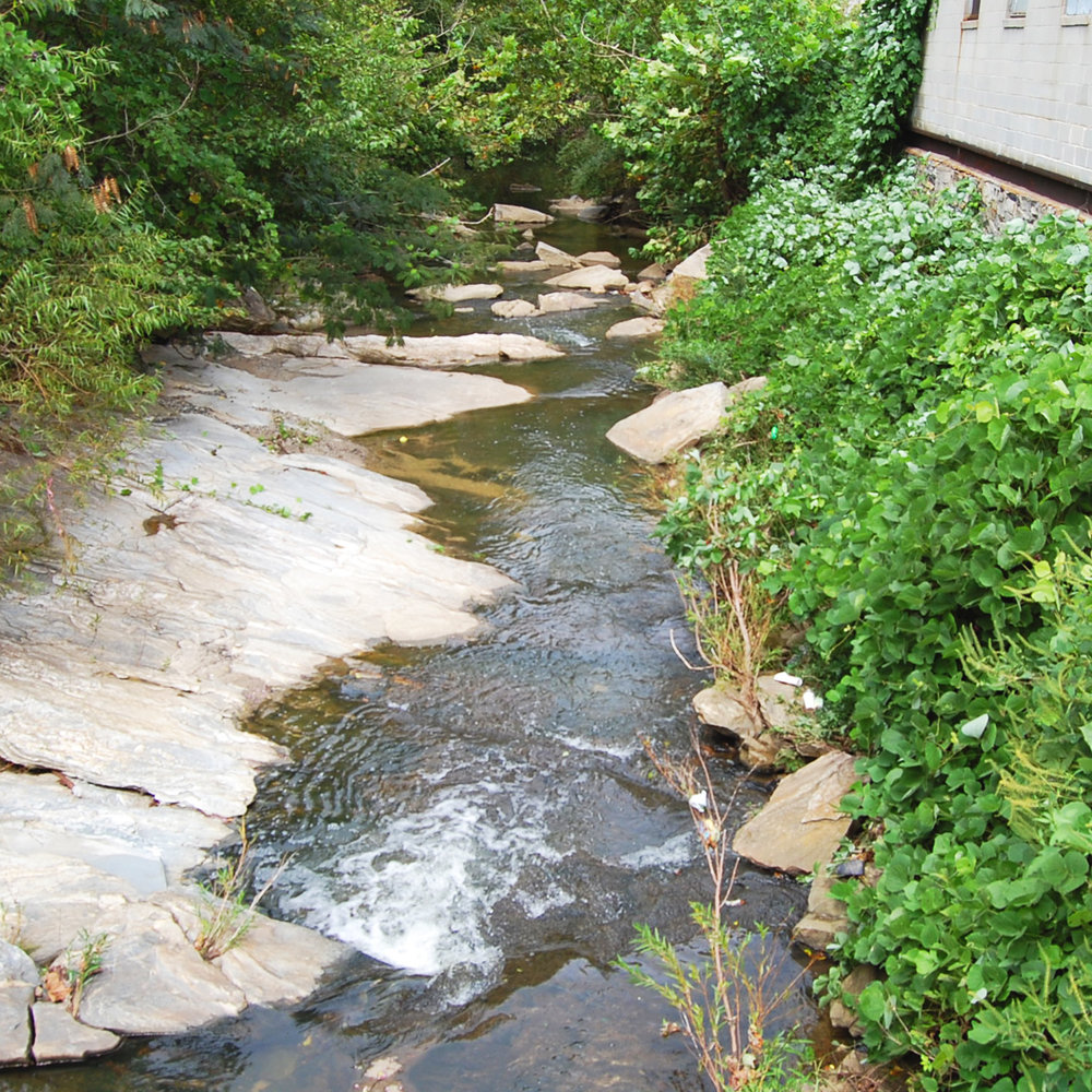 Taken from a progress visit after Tropical Storm Irma, the creek showing an increase in water flow.