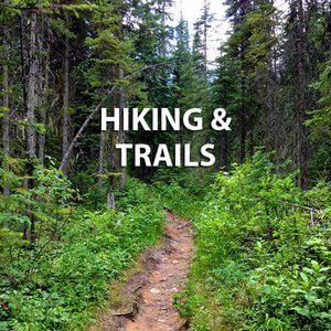 kicking-horse-golden-area-hiking-trails