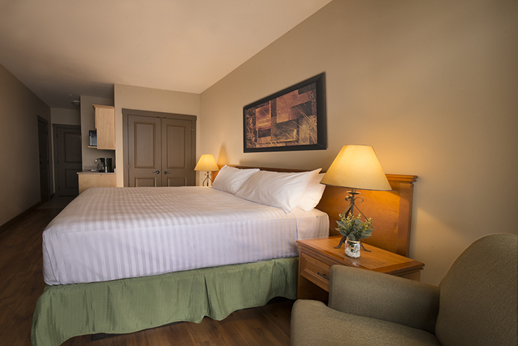 Palliser-Lodge-Guest-room-final-web.jpg