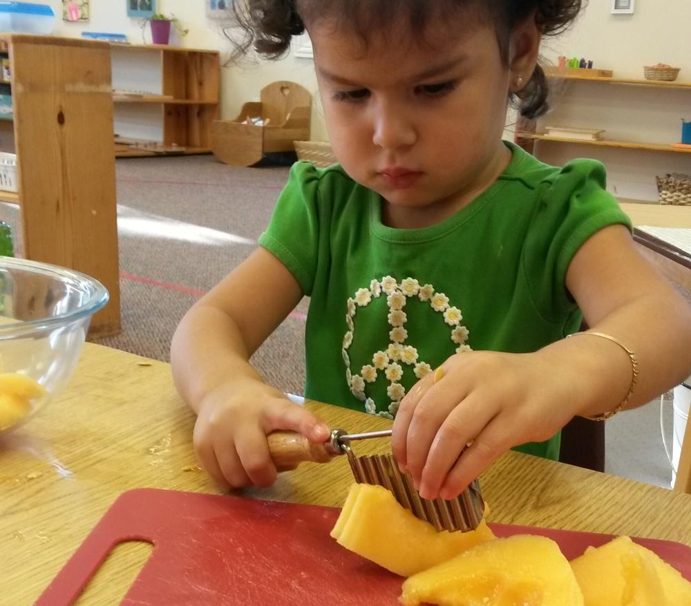 Toddler Old School Montessori