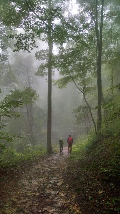 Walking through the rainy woods to climb.