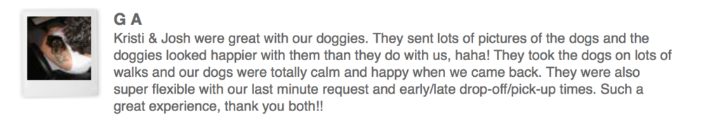 Dogsitting Review