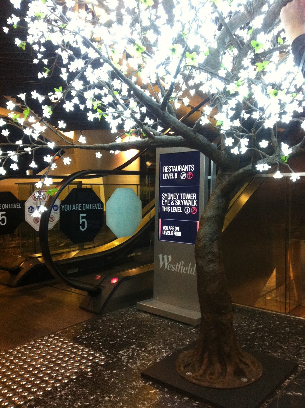 2.8 m CW Blossom Westfield Sydney Winter Fest 3.JPG