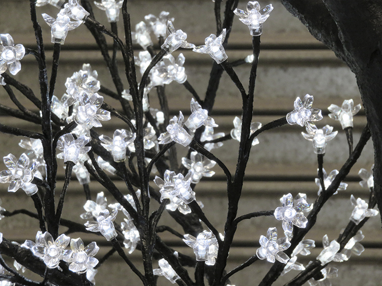 Blossom, Cool White LEDs with Black Trunk