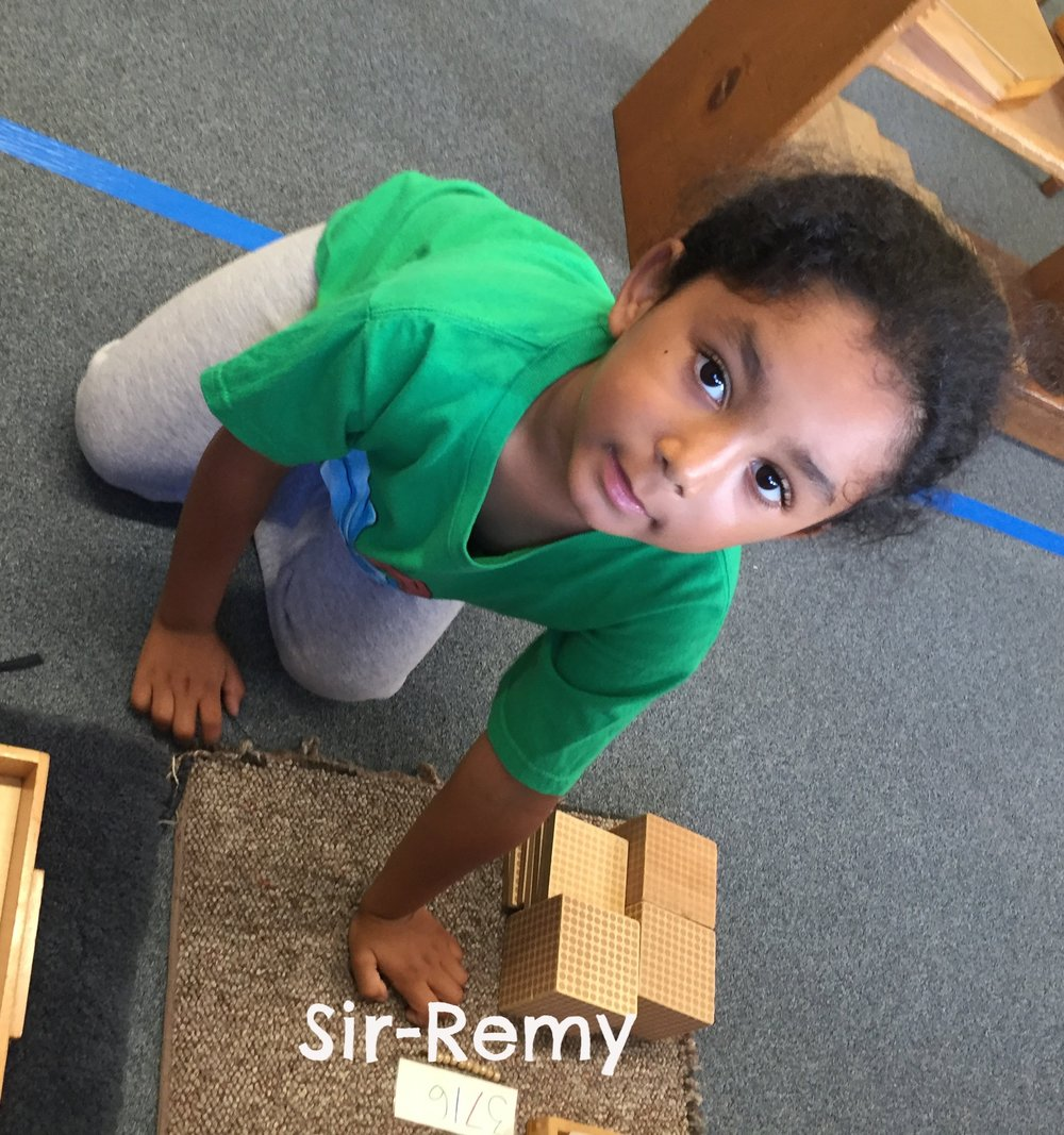 Sir-Remy # building copy.jpeg