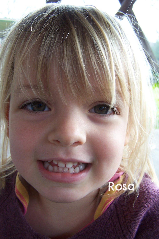 rosa close.jpg