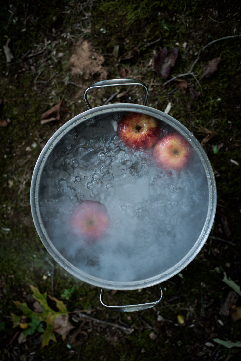 Asheville Folk: A Grown-up Halloween by Chelsea Lane. Keep traditions bubblin ' .  Fill a large pot or galvanized tub with water and dry  ice. Plop in a few apples.  Shazam! A bubbling cauldron with the nostalgia of bobbing-for-appl es ready to go.
