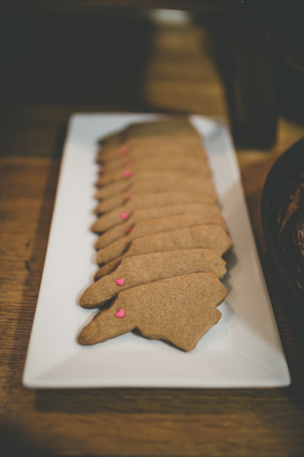 Asheville Folk Gatherings + Formations of Mental Objects. North Carolina shaped maple cookies. Photography by Nathan Rivers.