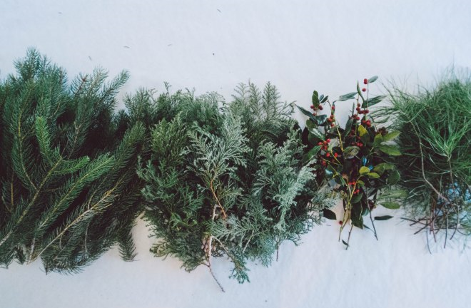 Asheville Folk: Holiday Wreath Making Workshop. Photo by Formations of Mental Objects.