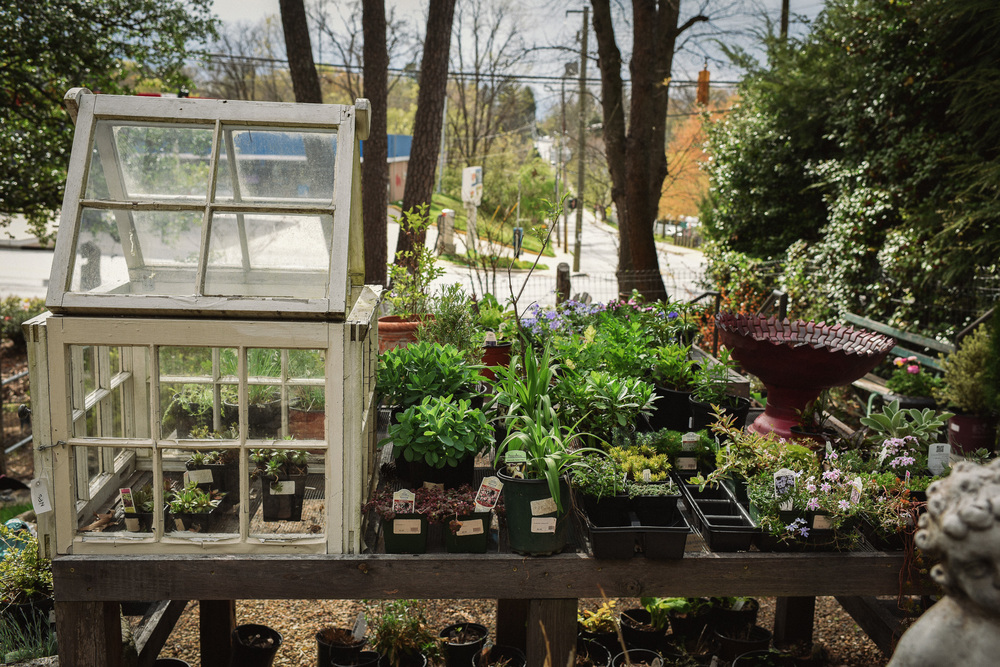 Earth Day Blog: Best Places in Asheville to get your seeds, starter plants & supplies. Rose's Garden Shop in North Asheville. Photo by Chelsea Lane Photography.