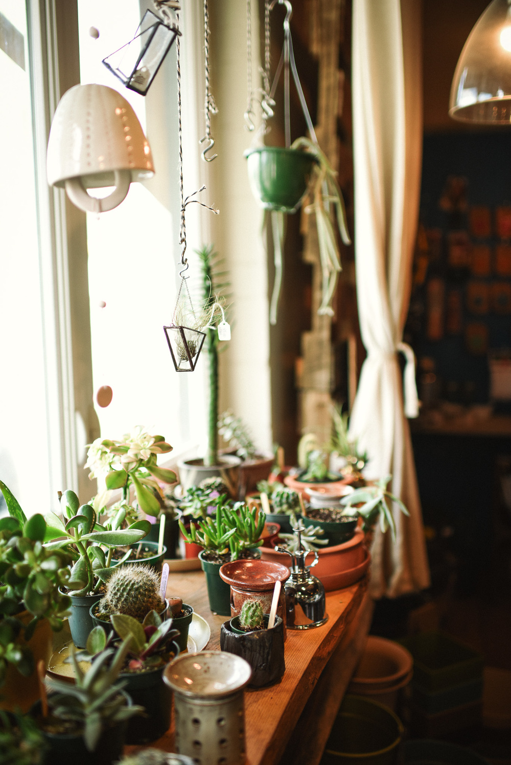 Earth Day: Best Places in Asheville to get seeds, starter plants & supplies.  Villagers in West Asheville offers supplies and workshops for the sustainable lifestyle. Photo: Chelsea Lane Photograph
