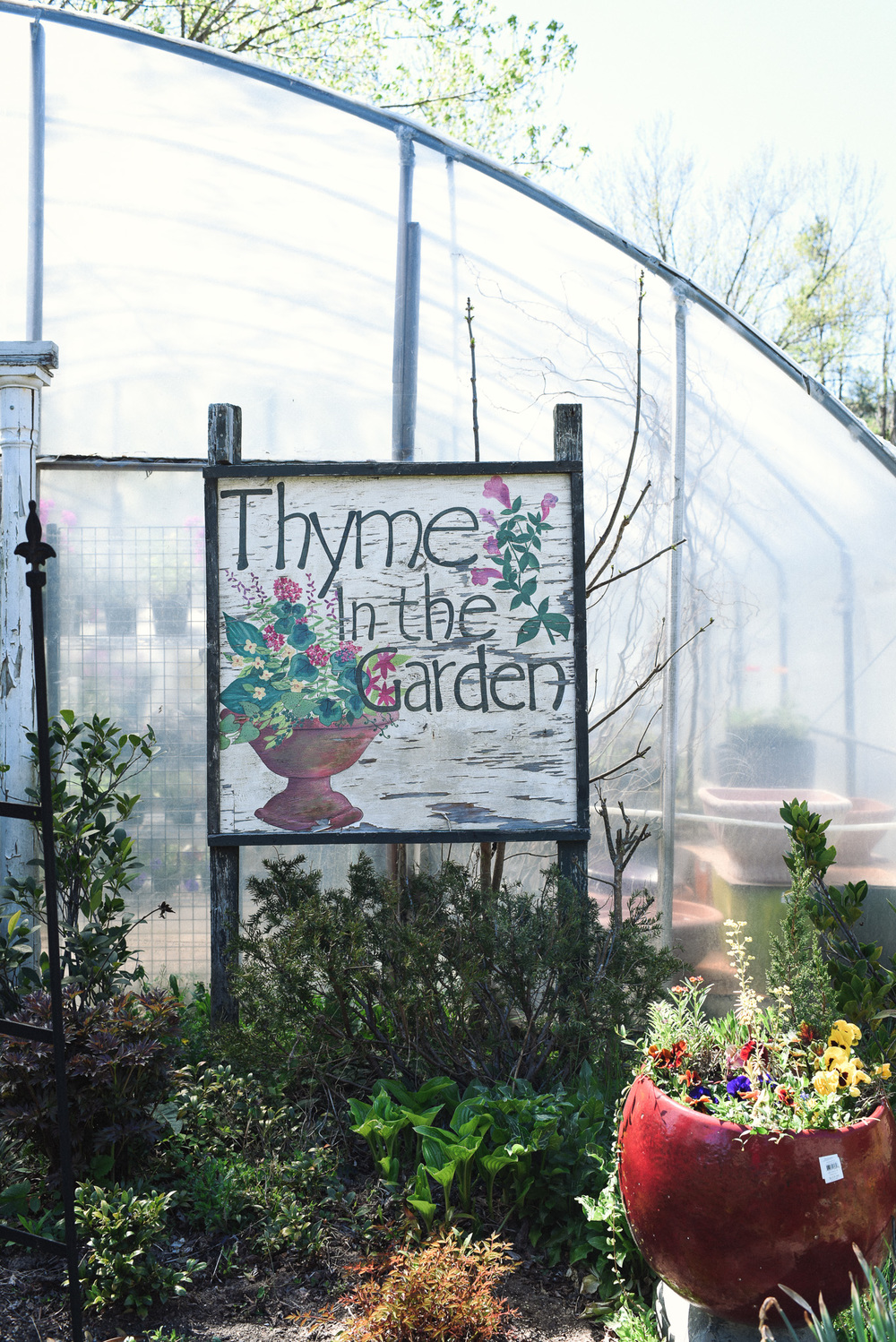 Earth Day: Best Places in Asheville to get seeds, starter plants & supplies.  Thyme in the Garden in North Asheville. Photo: Chelsea Lane Photography