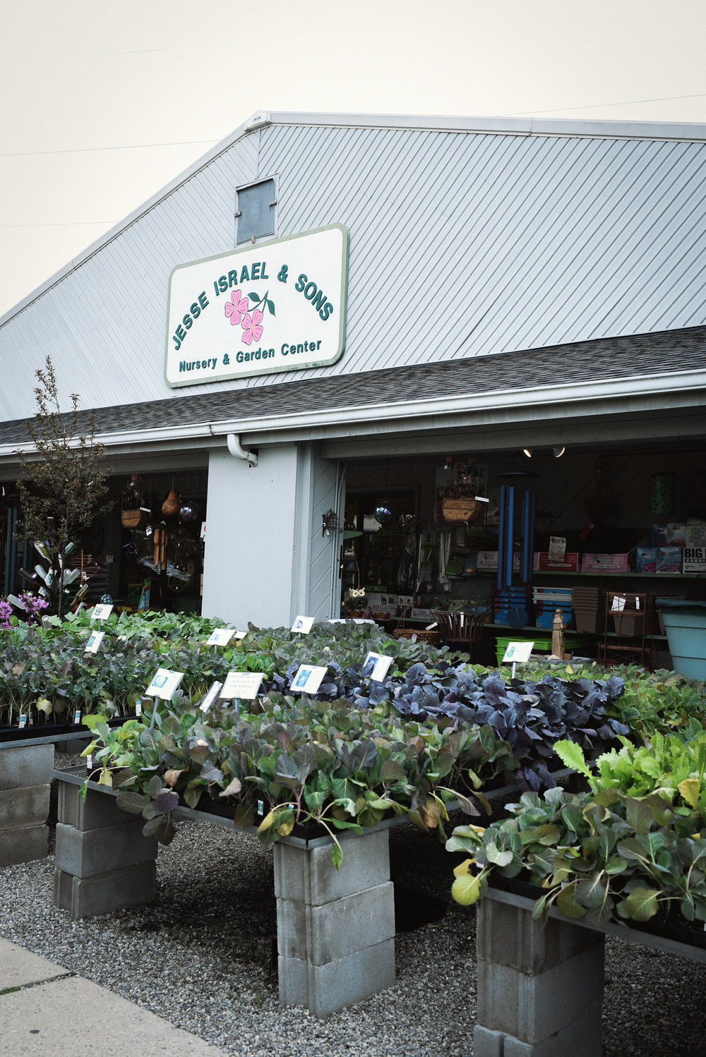Earth Day: Best Places in Asheville to get seeds, starter plants & supplies.  Jesse Israel and Sons. Photo: Chelsea Lane