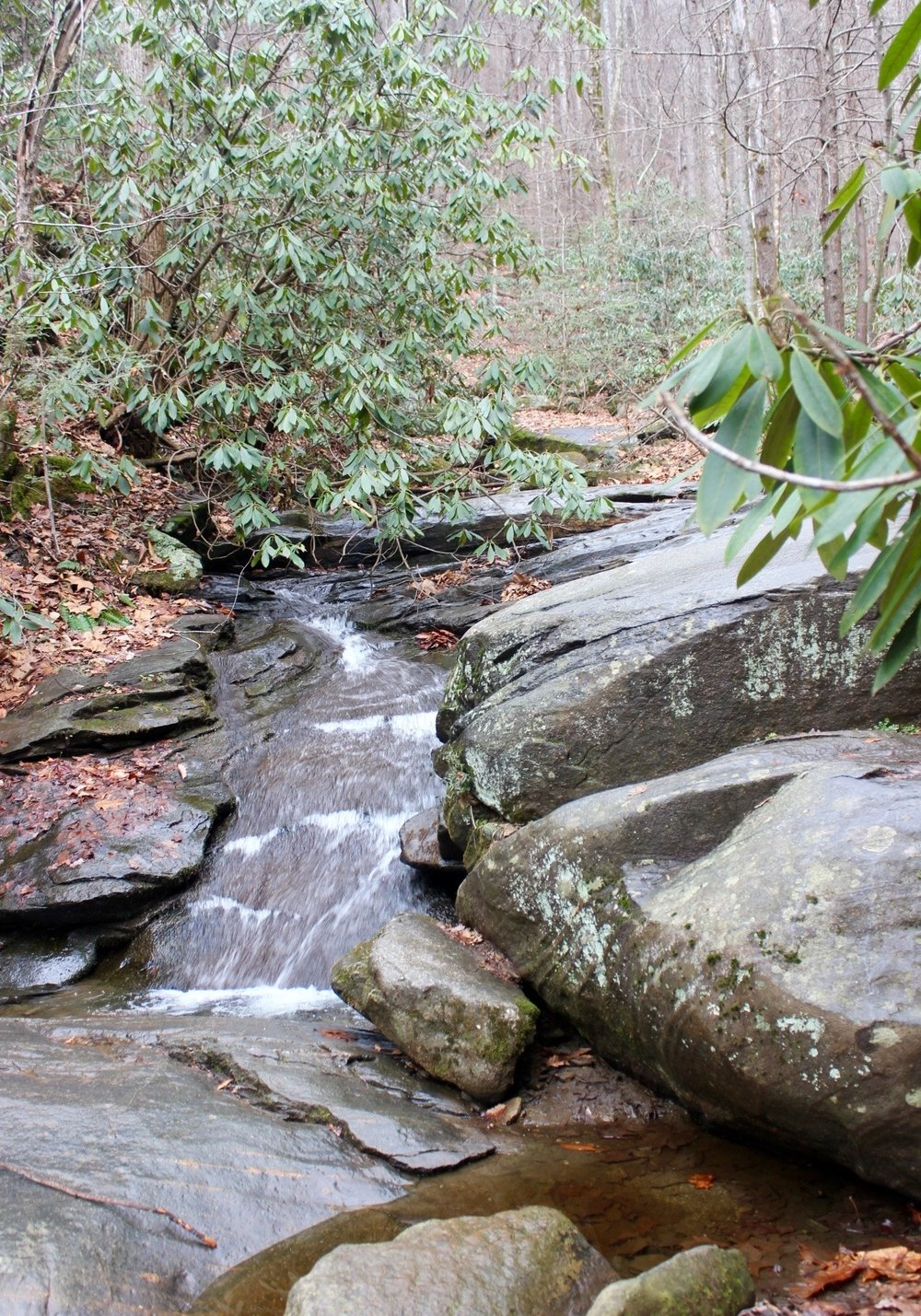 For those looking to take the perfect stroll through the woods that's not too long and not too strenuous, with a dash of history- this is the hike for you. Catawba Falls by Lily Barham