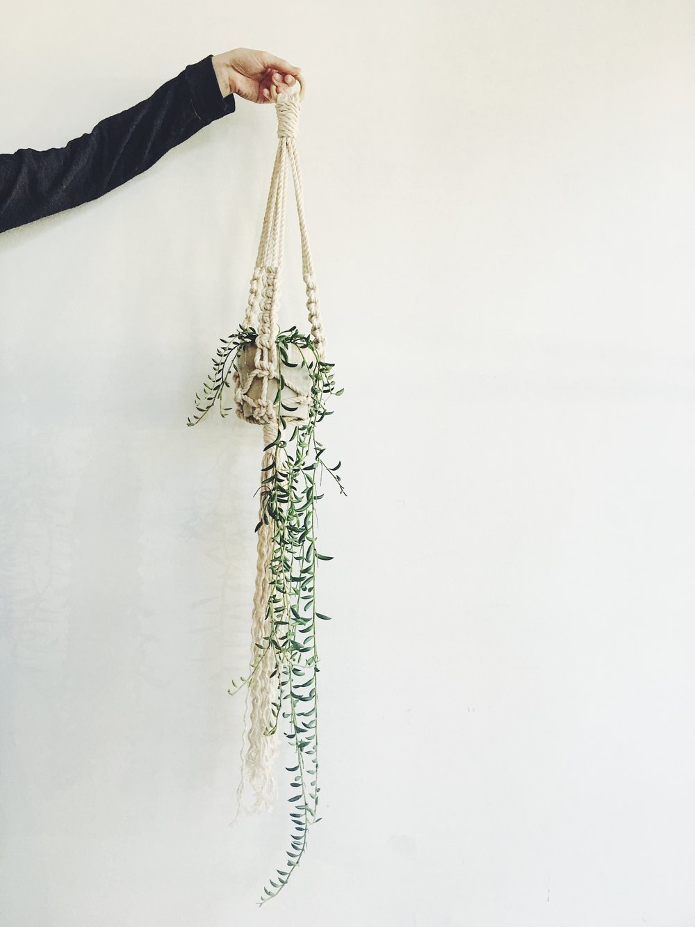 Asheville Folk Macramé plant hanger workshop with Katy Laverdiere & Christina Forêt.