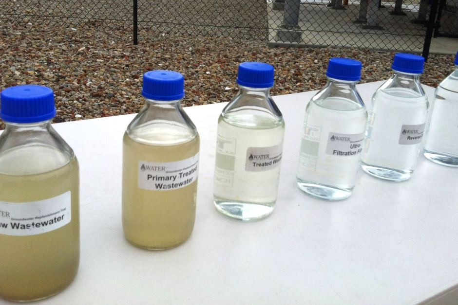 A selection of treated water from the government's groundwater replenishment pilot scheme. Credit: Stephanie Dalzell, ABC.